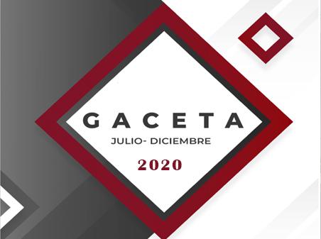 Gaceta-JulDic-20